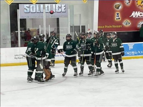 Hockey defeats Mattawan in first round of playoffs 3-1