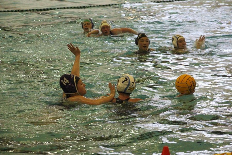 Varsity water polo wins both of its district seeding games