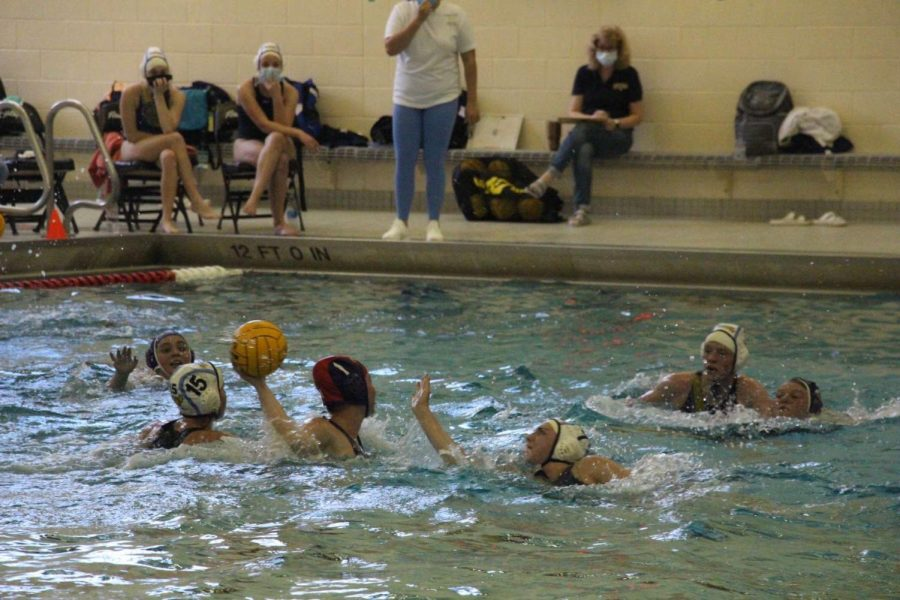 Water polo loses some built-up momentum with loss versus Jenison