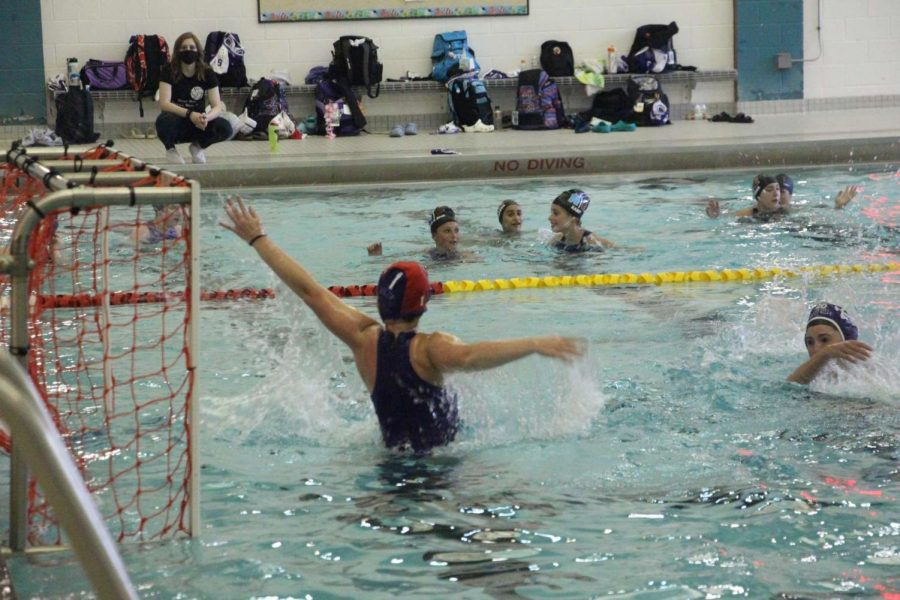 Varsity water polo drops all three district seeding games before final stretch of the season