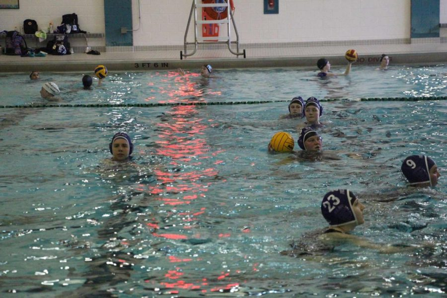 Varsity water polo loses its final game of the regular season to Hudsonville